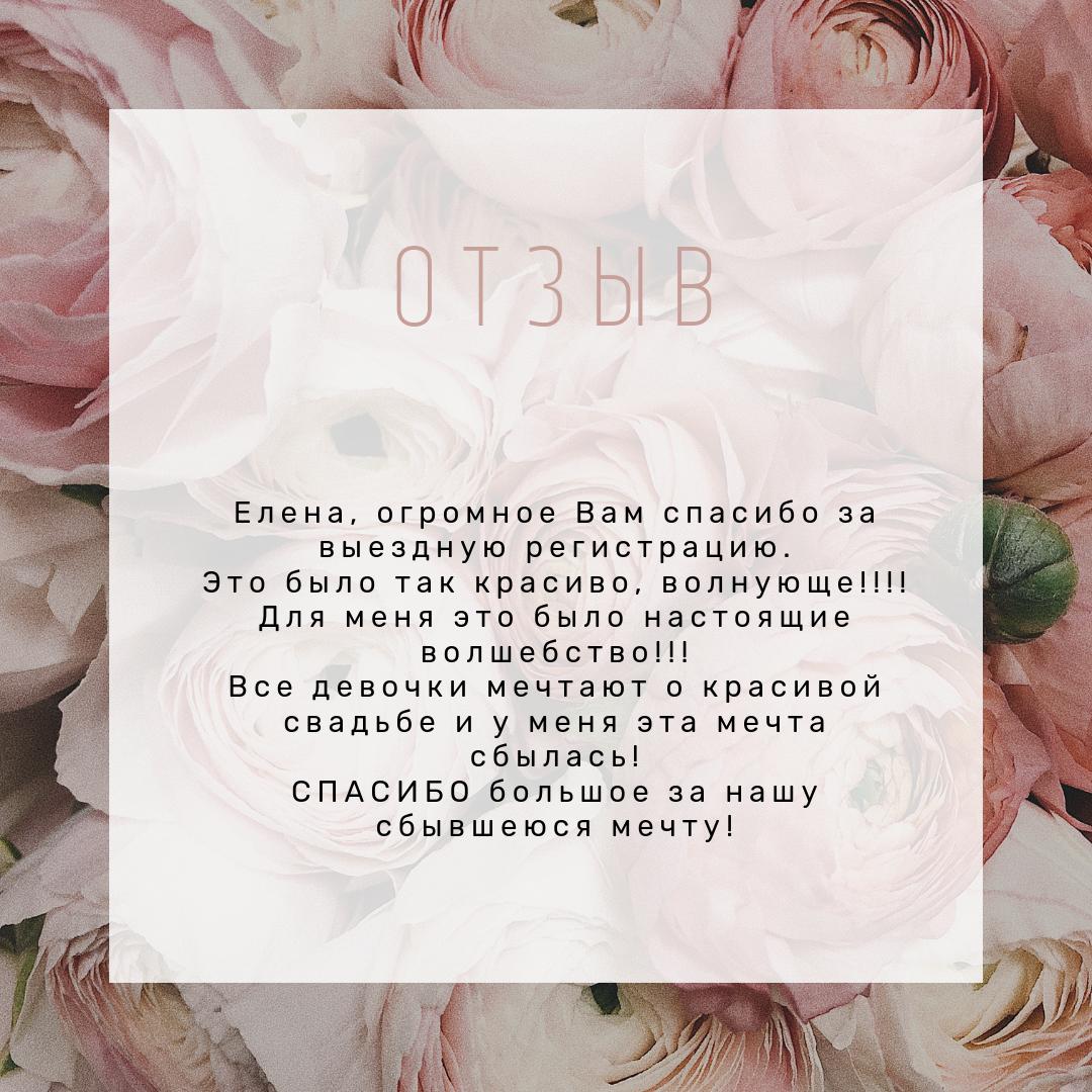 фото 9 Свадебный регистратор выездной церемонии Минск отзывы