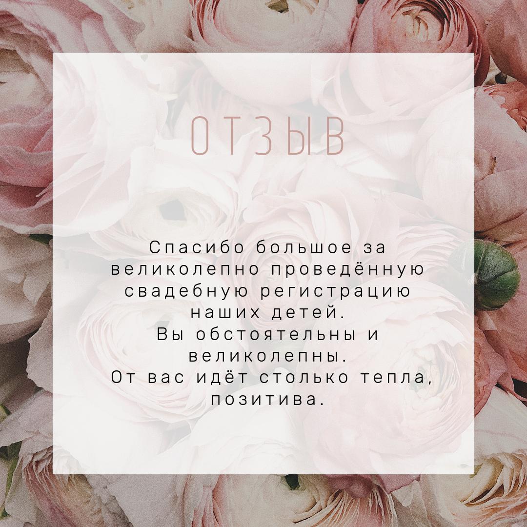 фото 8 Свадебный регистратор выездной церемонии Минск отзывы