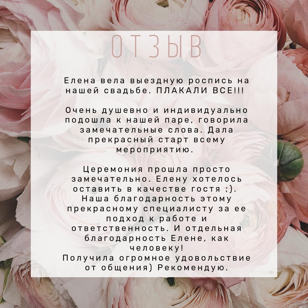 фото 7 Свадебный регистратор выездной церемонии Минск отзывы